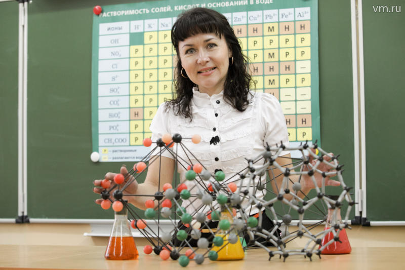 Педагогическое образование: учитель химии в условиях реализации ФГОС