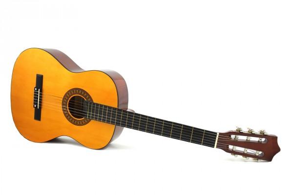 Педагогика дополнительного образования: преподаватель инструментального исполнительства. Гитара