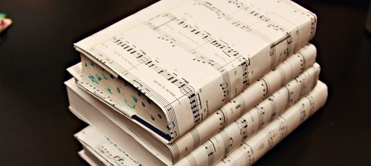 Педагогика дополнительного образования: преподаватель по музыкально-теоретическим дисциплинам
