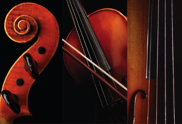 Педагогика дополнительного образования: преподаватель инструментального исполнительства. Струнные инструменты