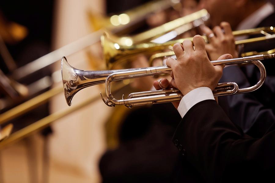 Педагогика дополнительного образования: преподаватель инструментального исполнительства. Духовые инструменты